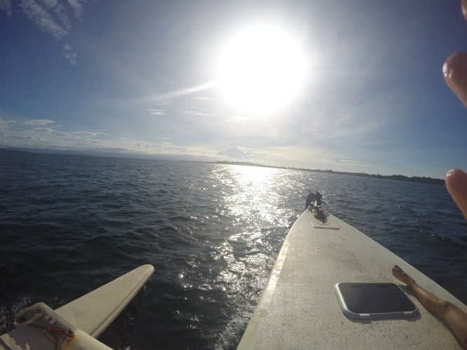 what to do in bocas del toro: on the diving boat