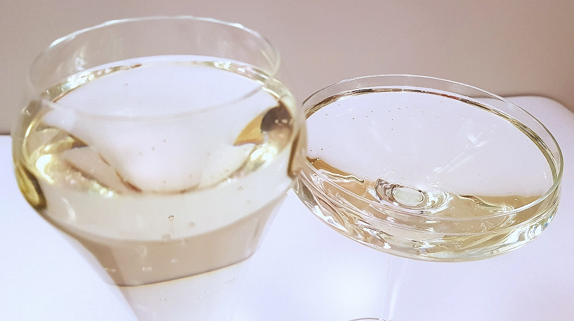 Champagne flute and coupe - Christmas Presents Round Up by BeckyBecky Blogs