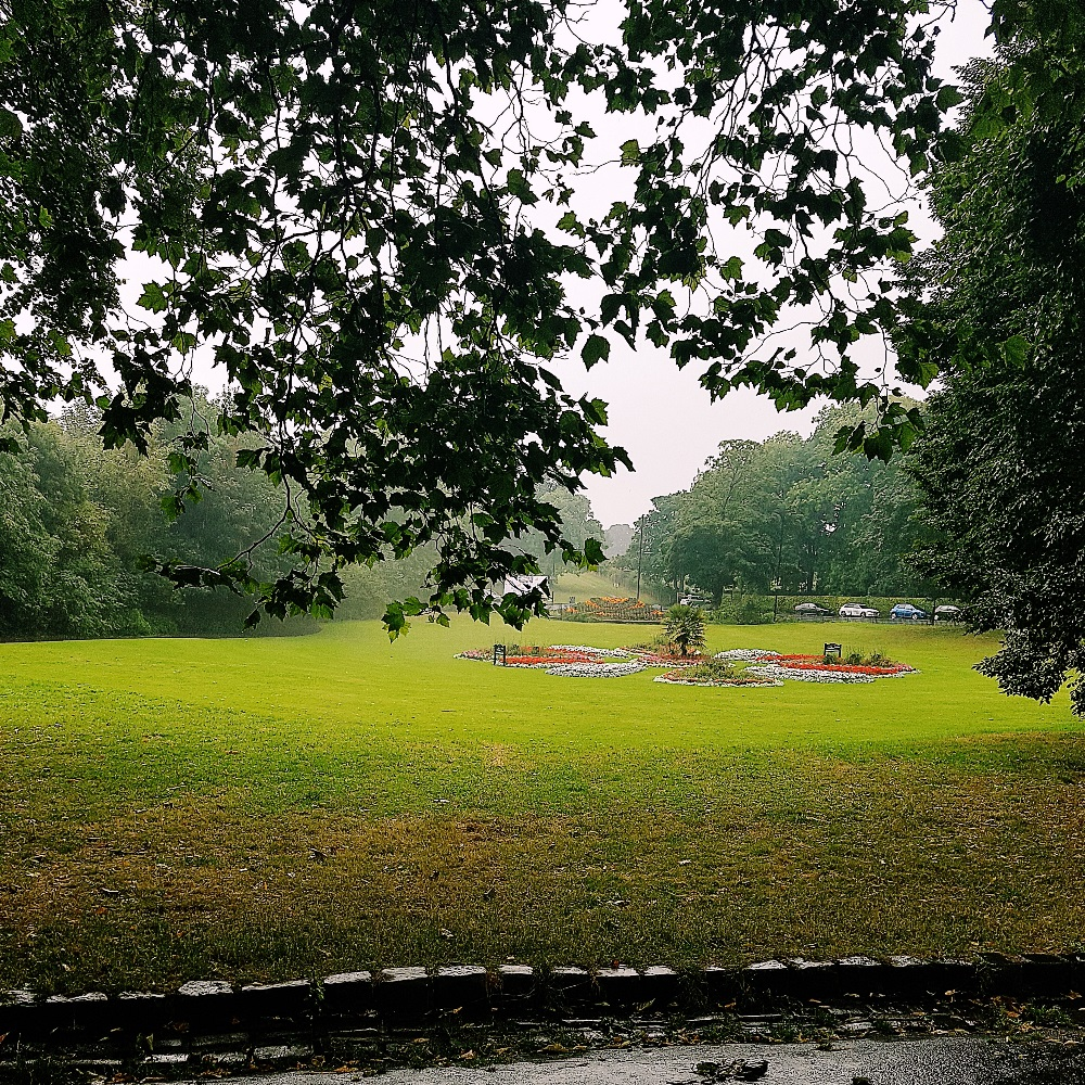 Roundhay Park looking for the North Leeds Food Festival