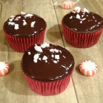 chocolate cupcakes with chocolate ganache