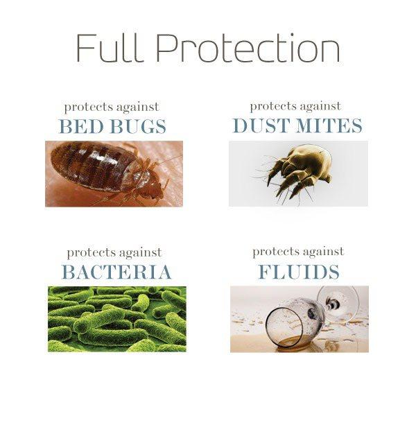Saferest Premium Hypoallergenic Waterproof Zippered Bed Bug Proof Pillow Encat