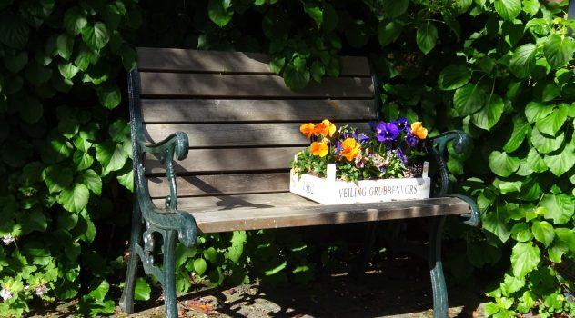 Romantische foto van een tuinbankje met een bakje viooltjes in de bloei