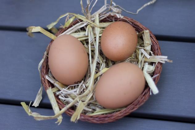 Drie eieren in een mandje gevuld met stro