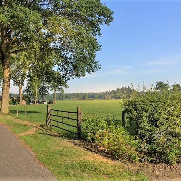 Uitzicht op een weiland omringd door een hek in de buurt van de B&B