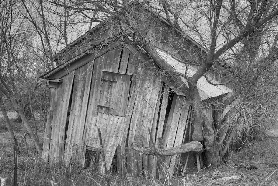 Black Dog Barn Iowa