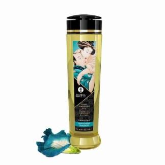 Shunga Massage Oil Sensual Island Blossoms 240ml