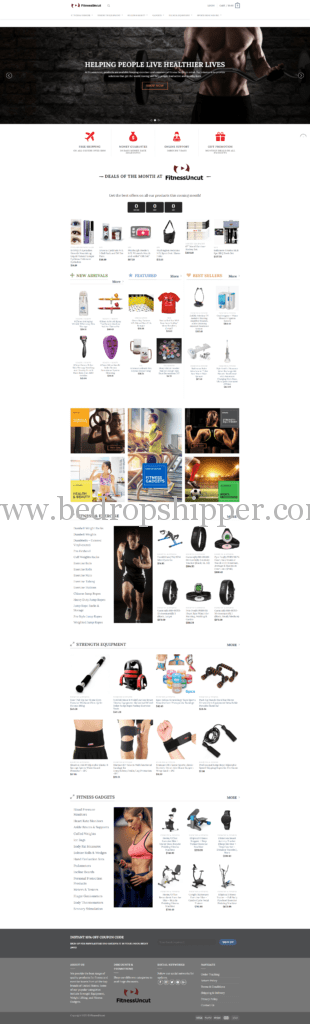 , Dropshipping Business