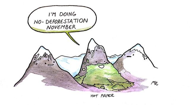 no-deforestation-november