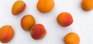 ApricotAmarettiFool_ApricotsLong