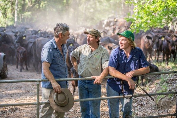 NSW branded beef program's China focus leads to business with online retail  giant - Beef Central