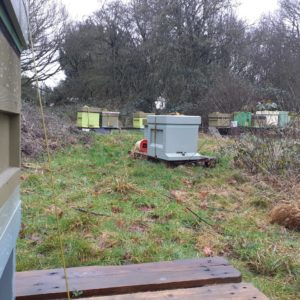 beehive yourself apiary 125 x 125