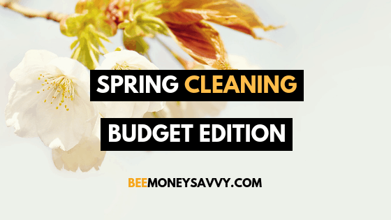 Spring Cleaning: Budget Edition