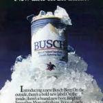 Busch Mtns