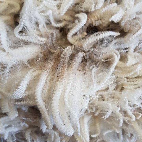 Fleece - undyed