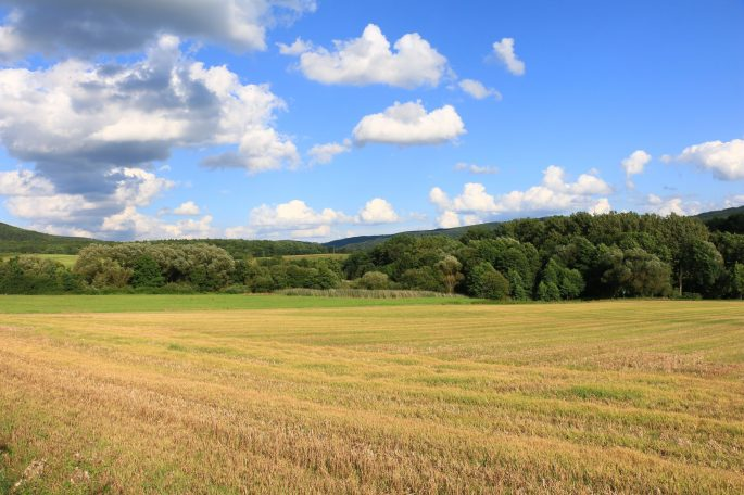 rossdorf landscape
