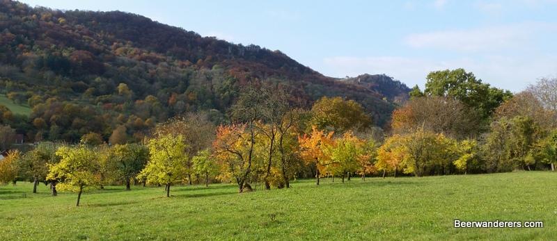 walberla foliage