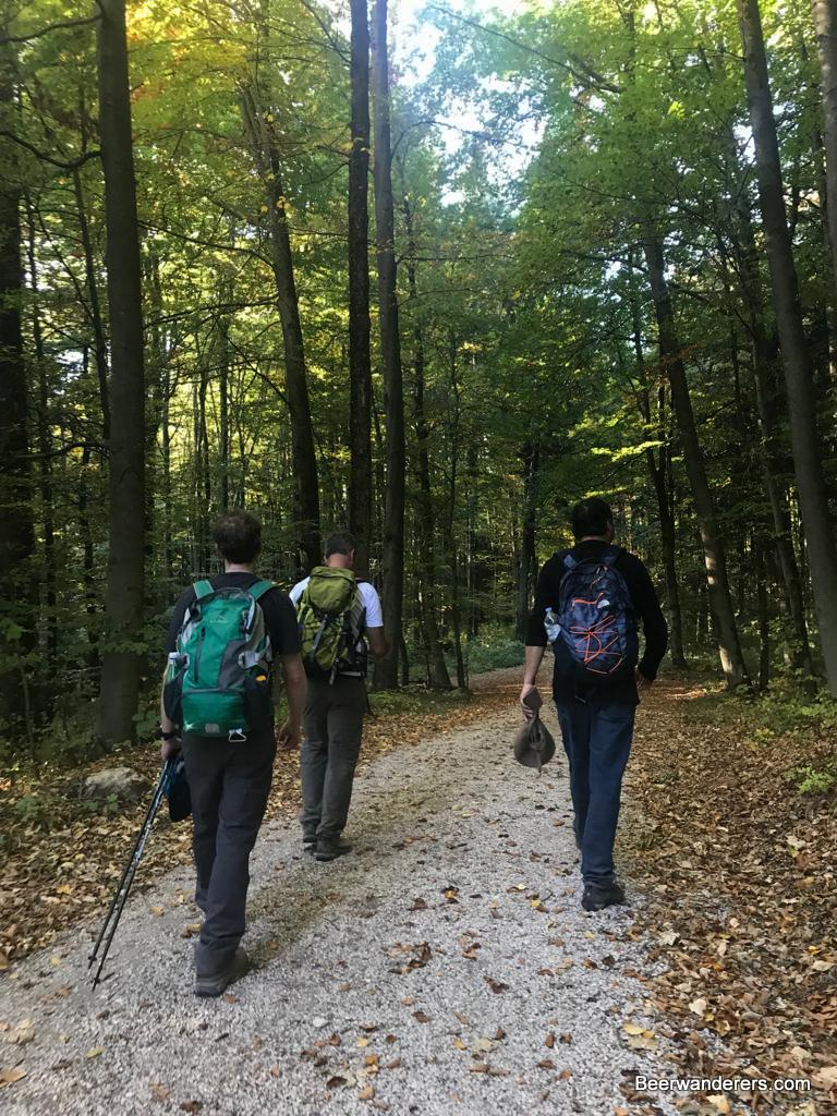 hikers on trail with foliage