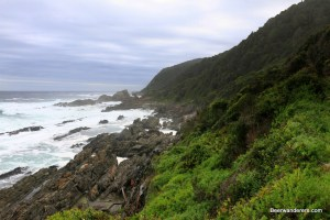 green trail on coast