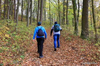 beer hikers on leafy trail