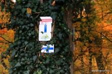 sign on leafy tree