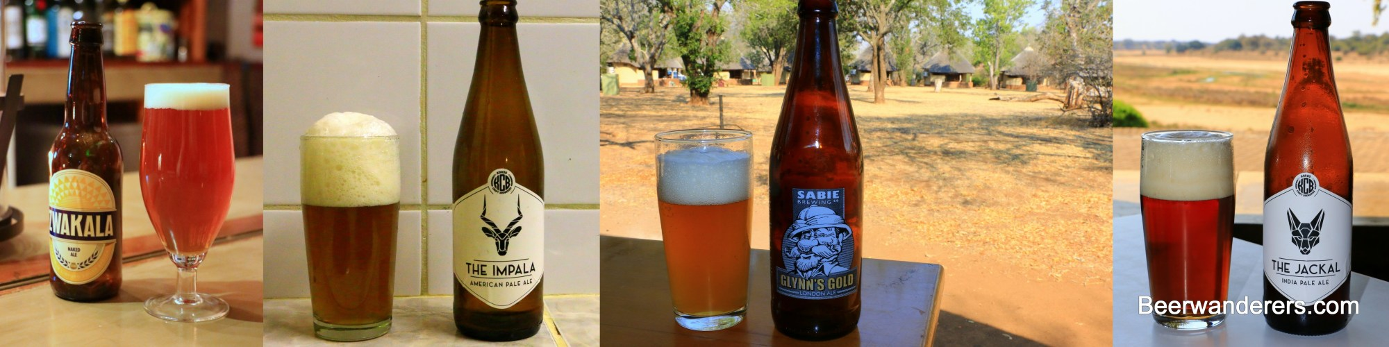 South African craft beer collage