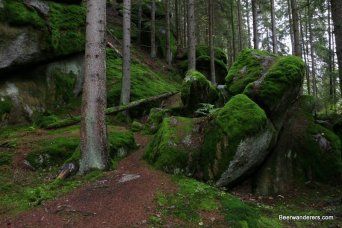 green moss or rocks