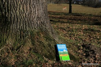 book by tree