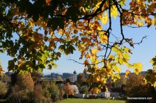 autumn leaves with church