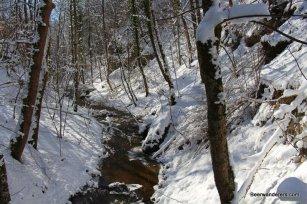 showy trail with stream