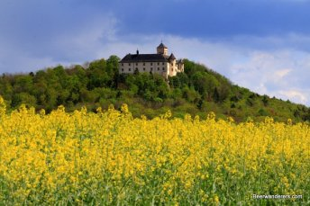 castle above a field of rape