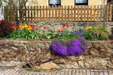 flowers in front of house