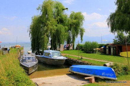small boats docked under tree