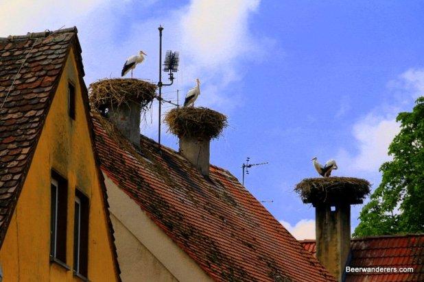stork nests on chimneys