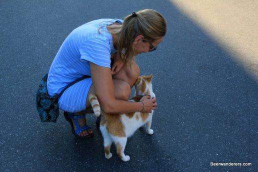 woman petting cat