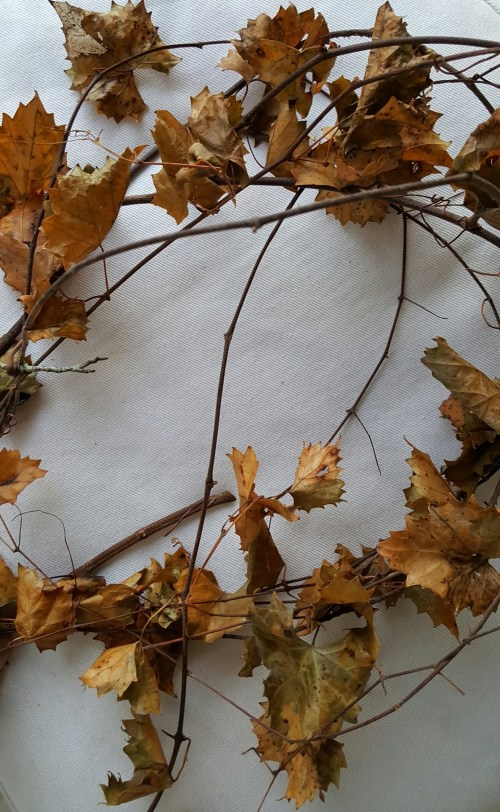 Dried Grapevine and Branches in Fall and Winter Home Decor