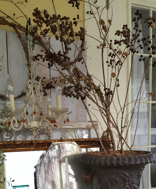 Dried Berries and Branches in Fall and Winter Home Decor