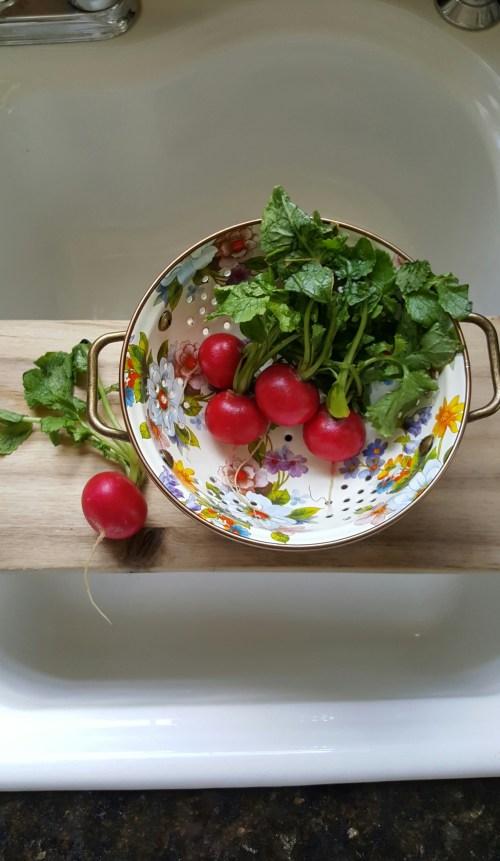 MacKenzie-Childs Spring Kitchen Decor White Farmhouse Cooking