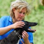 Beest en Baas Tellington TTouch Training Nederland - Spanningspatronen hond