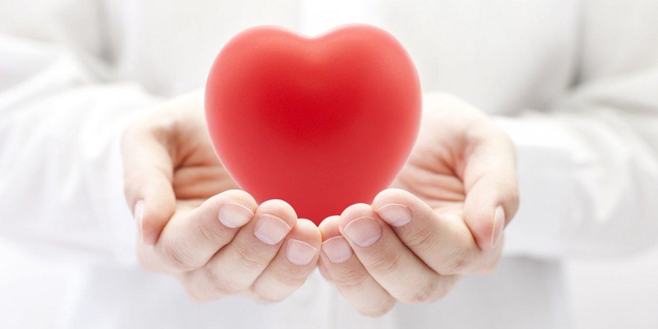 heart shape in hand