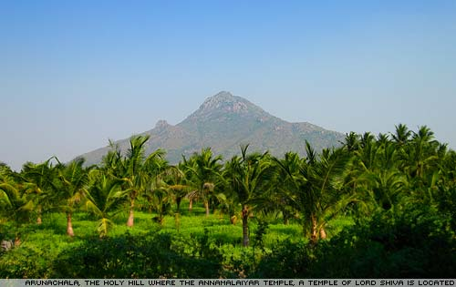 Arunachala, the holy hill.