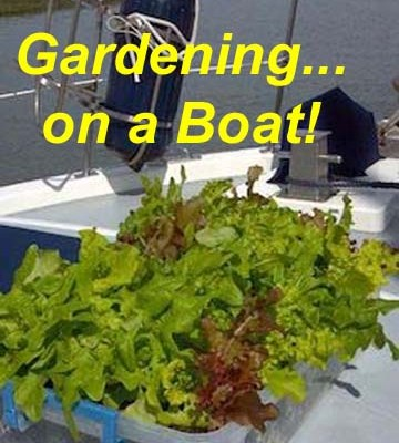 Gardening on a Boat!