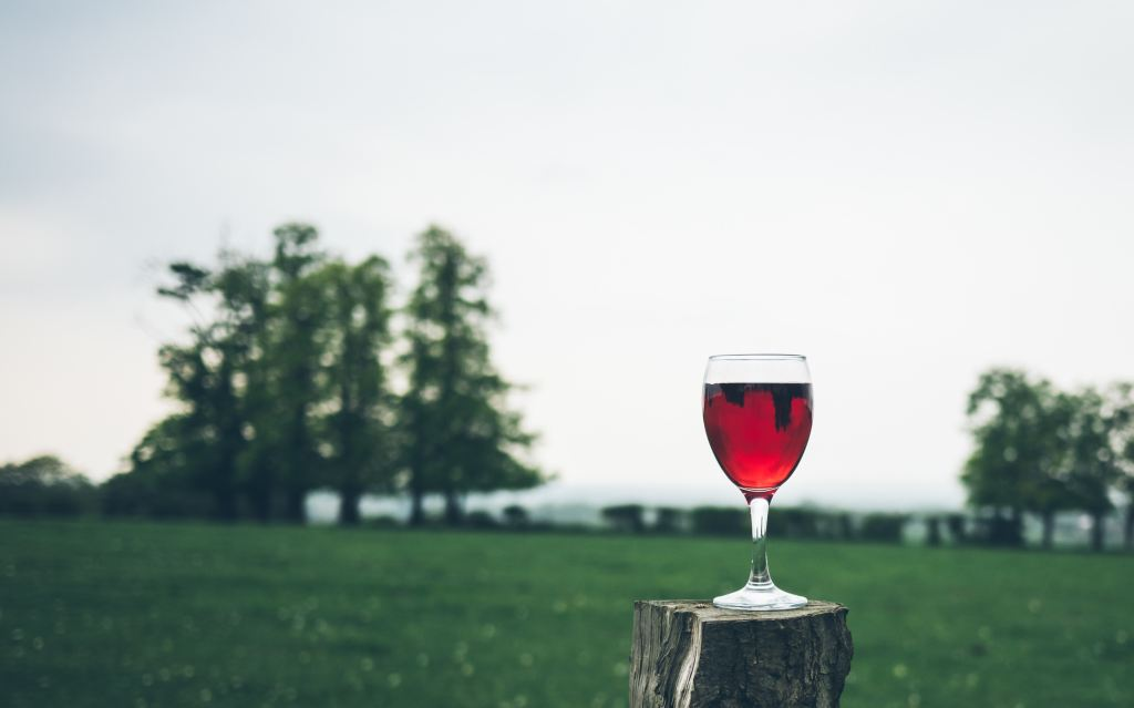 Glass of wine on stump