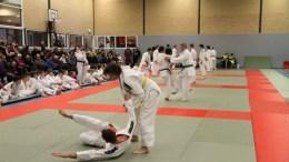 A good demonstration of the Yoko Ukemi or Side Breakfall