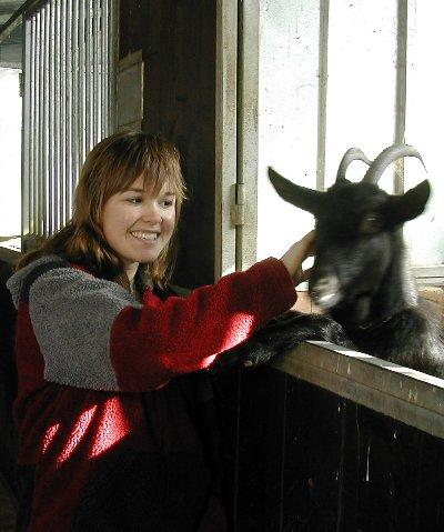 goat6