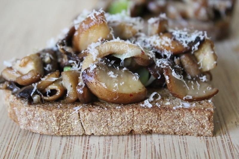 wilde paddenstoelen crostini