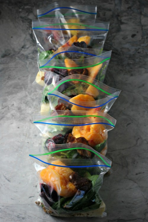 Meal Prep Ideas Smoothie On The Go Ziploc Bags Store Freeze Fruit