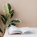 plant care information