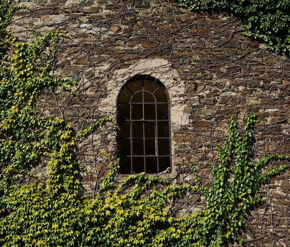 wall-1671848_1280