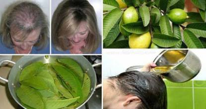 Easy Natural way to prevent Hair fall 11 Behind History