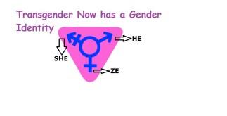 He, She, ZE | Transgender Has Gender Identity, Expression 5 Behind History